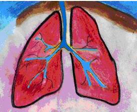 Good lungs are full of air